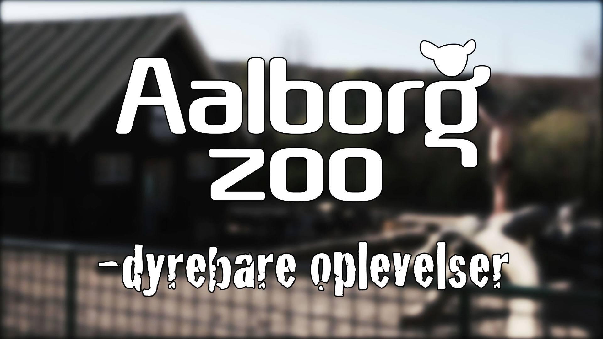 C skål Aalborg Zoo
